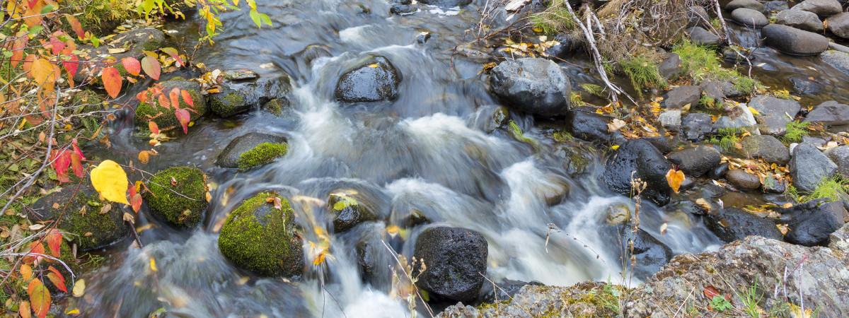 BioHarmony Wasterwater Treatment Solutions